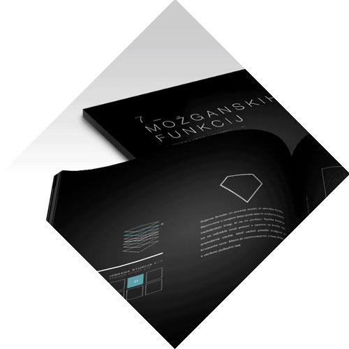 grafično oblikovanje tiskovin in celostna grafična podoba