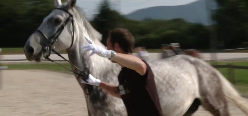Embedded thumbnail for Športni objekti Maribor - video produkcija turističnega videa